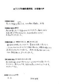 voice2